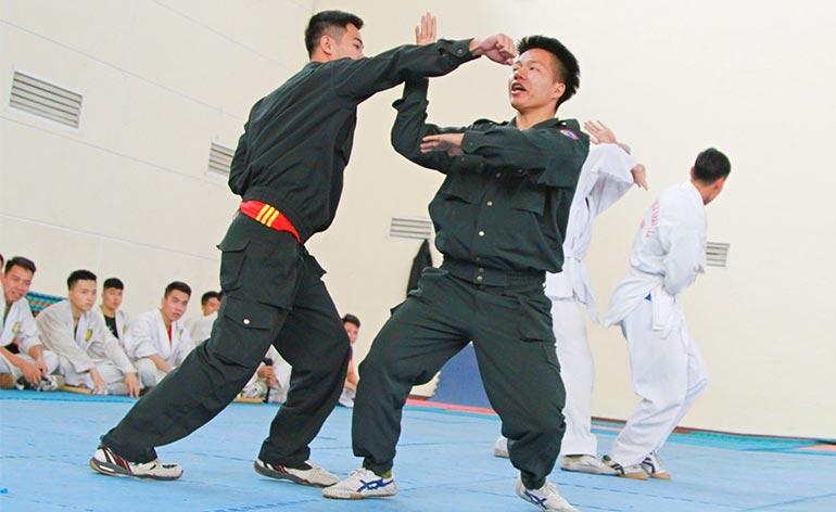 Stop Police Start Kung Fu Kung Fu Kingdom 770x472