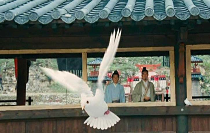 A director trademark white bird