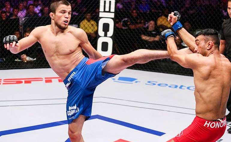 Umar Nurmagomedov Top 5 MMA Finishes - Kung Fu Kingdom
