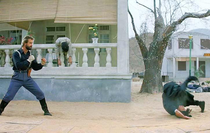 Hard hitting choreography from Sammo Hung