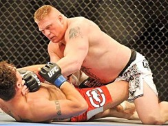 MMA: 5 Epic Fight Events Every Fan Must See!