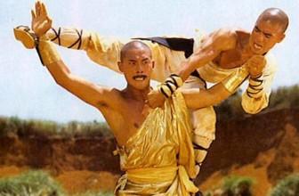 Shaolin vs Lama (1983)