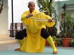 Shifu Sharma demonstrating Duanda