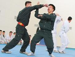Stop, Police! Start Kung Fu!