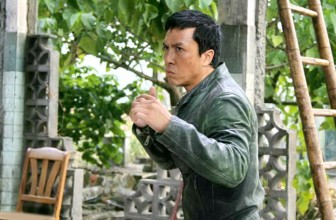 Top 10 Donnie Yen Movie Fight Scenes!