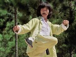 Top 10 Hwang Jang Lee Movie Fight Scenes