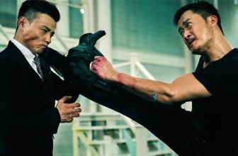 Top 10 Wu Jing Movie Fights