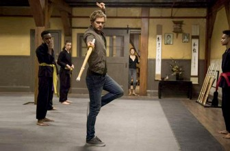 Top 15 Most Anticipated Martial Arts Movies of 2017